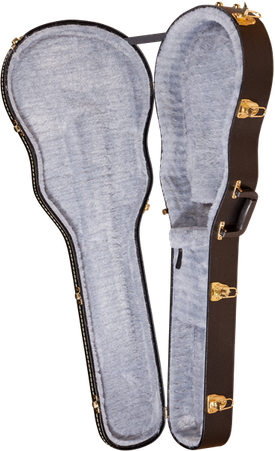 G6238FT Solid Body Flat Top Hardshell Case